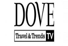 dove-traveltrends.jpg