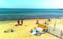 spiagge2.jpg